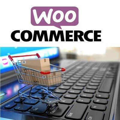 WordPress Training WooCoomerce Training Courses in Singapore e-Commerce [tag]